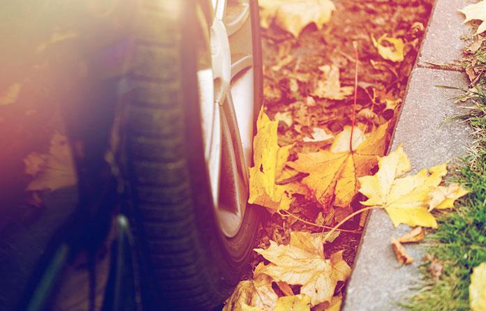 Drogi jesienią - deszcz nie jedynym zagrożeniem na drodze